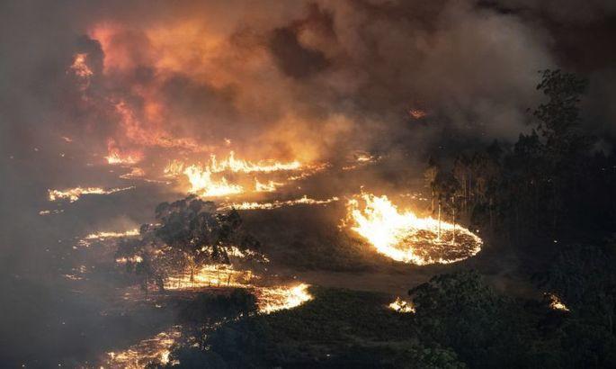Австралию накрыли пожары. Мир спорта старается помогать, чем может