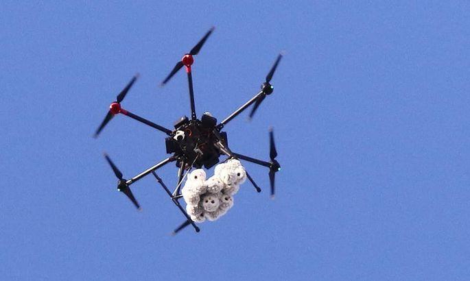 Ультрас Динамо показали, как на матче с Шахтером с дрона были сброшены плюшевые совы
