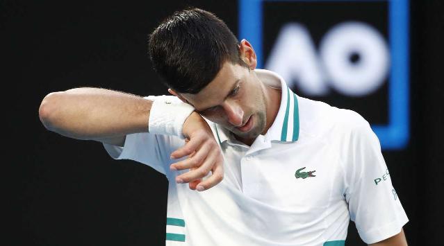 Джокович победил Медведева и девятый раз стал чемпионом Australian Open - изображение 1